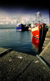 Dingle-Boats