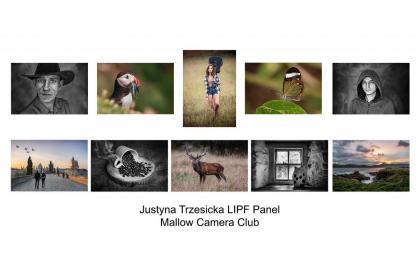 LIPF 2020 Justyna Trzesicka