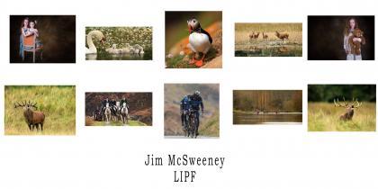 LIPF 2016 Jim McSweeney